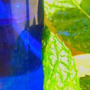 Nyári szellő – hűsítő testpermet
