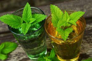 citromfű aromavíz az influenza ellen