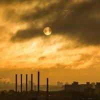 Xenoösztrogének 2. – Mik ezek a káros anyagok?