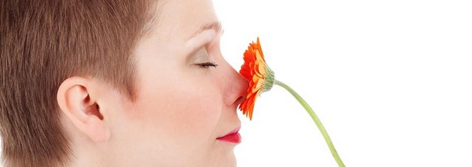 Nyerd vissza a szaglásodat illóolajokkal